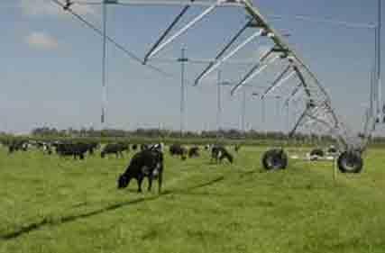 irrigation-11